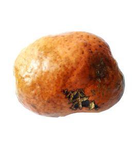 Африканский орех мохилхин от бесплодия (100-200 г, Египет)